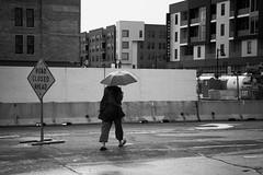 Road Closed Ahead (mfhiatt) Tags: img19320618jpg desmoines farmersmarket downtownfarmersmarket courtavenue blackandwhite iowa street streetphotography rain umbrella