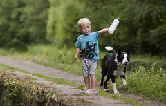 The first outrun (A child in the night) Tags: child young handler first sheepdog bordercollie working pet outrun england training