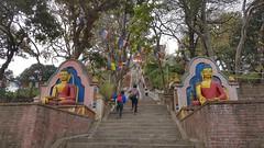 20180315_132910-01 (World Wild Tour - 500 days around the world) Tags: annapurna world wild tour worldwildtour snow pokhara kathmandu trekking himalaya everest landscape sunset sunrise montain