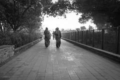 Let's walk together (tsephu501) Tags: ifttt 500px walk black white mustang women tibetan buddhism nepal lumbini maya devi temple garden for peace religion birth place buddha pilgrim mantra