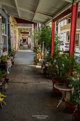 Locke California (bcr160) Tags: locke california walkway porch plants pots nikon d7100 nikkor 2470 bcr160 kl0 explore explored inexplore