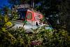 stranded. (Rod Elbahn) Tags: boot schiff schifffahrt wald meer ostsee rügen alt old lost vergessen forrest plants ocean water gestrandet strandet rescue