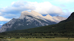 Mount Rundle, Banff National Park, Viewed from the Rocky Mountaineer, Banff,  Alberta, Canada (Black Diamond Images) Tags: alberta canada kamloopstobanff rockymountaineer rockymountaineerroute canadianrockies canadiantourism armstronggroupltd goldleaf goldleafdomecoach train railroad railway travelphotography landscapes mountain mountains mountainside landscape forest pineforest river banff lakelouise bowrivervalley bowriver mountrundle banffnationalpark vermilionlakes mtrundle scenictours