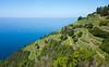 Diag (benoubenoubenou) Tags: italie nature montagne cinque terre fleur bateau