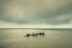 .R.N.L.I. (Kevin HARWIN) Tags: rnli lifeboat boat water sea wet sand beach cloud sky whitstable kent south east uk england britain canon eos 70d 1555mm lens