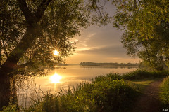 Morning Light (Martine Lambrechts) Tags: morning light sunrise nature landscape tree water