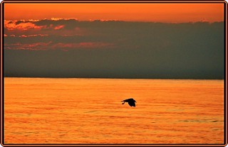 Black Sea, Romania: Before sunrise