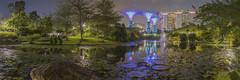 gbtb pano 2 (l0relle) Tags: lights night water singapore gardensbythebay