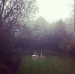 Jardín británico Londres (Reino Unido) (AlexBiggie77) Tags: geografía urbana jardín victoriano hayas robles manzano humedad nieblas ealing westlondon europa leer