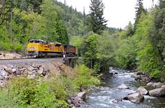 Dunsmuir, California (UW1983) Tags: trains railroads unionpacific up blackbuttesubdivision sacramentoriver sd70ah dunsmuir california