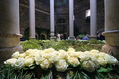 Maig_5122 (Joanbrebo) Tags: girona catalunya españa es tempsdeflors tempsdeflors2018 canoneos80d eosd efs1018mmf4556isstm autofocus flors flores flowers fiori fleur blumen blossom