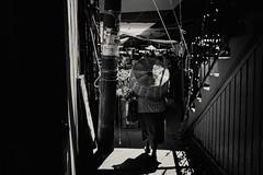 La ciudad (poefoto.com.mx) Tags: poefotocom poefoto poe edgarpoe edgar edgarpoeoaxaca canon5dmarkii fujifilmx100f méxico oaxacadejuárez oaxaca oaxacapoe fotodeoaxaca fotógrafosenoaxaca fotógrafosdeoaxaca fotógrafooaxaqueño fotografíaenoaxaca