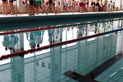 Start your engines! (kceuppens) Tags: swimming swim pool zwembad swimmingpool competition wedstrijd water antwerp antwerpen belgium nikon d810 nikond810 nikkor