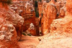 IMG_1824 (Ichiban7too) Tags: bryce national park canyon utah nature hoodoo red sandstone