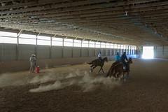 JBC_6543.jpg (Jim Babbage) Tags: krahc bethany appaloosa horses horseshow 2018