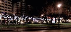 2017-12-28_19-35-24 (LuJaHu) Tags: asturias gijón plaza nocturna noche gijon españa spain parque arbol street callejera leecolemax2