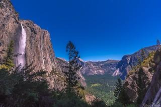 Yosemite_6-10-18_102