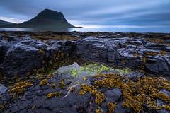 A little bit og green (Tómas Freyr) Tags: grundarfjardarbaer grundarfjarðarbær grundarfjordur grundarfjörður iceland kirkjufell beach clouds fjara landscape nightscape ocean sea sky skyline