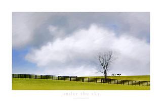 UNDER THE SKY (SOUS LE CIEL)