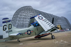 World War II Aircraft (Jeffrey Balfus (thx for 2.5 Million views)) Tags: aircraft golf sonya9mirrorless sonyalpha sonyilce9 fullframe sonyfe282470gm navytrainer