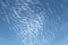 Clouds (Aniemar) Tags: wolken clouds himmel heaven canon norge norway norwegen lofoten blau blue white schäfchenwolken canoneos1100d ƒ40 280mm 14000 iso320