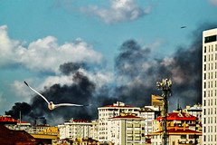 black smoke (s_gulfidan) Tags: cityscape clouds seagull apartments houses 100faves nwn