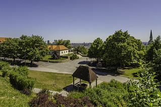 Garden in the castle Bratislava