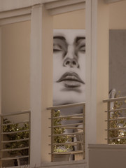 The Face (Steve Taylor (Photography)) Tags: face art graffiti mural portrait streetart brown woman lady newzealand nz southisland canterbury christchurch ecstasy bliss