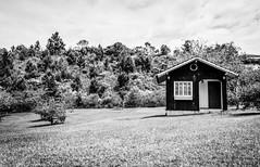 Landscape (5) (Sun Hunters) Tags: house smallhouse tinyhouse grass