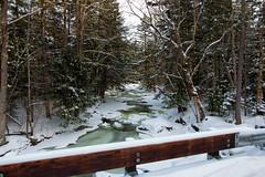 20180203-IMG_2973-Edit (franciscoruela) Tags: hiking winter landscape mt garvey