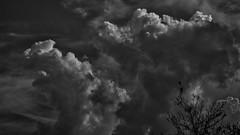Wolkenberge (p.schmal) Tags: olympuspenf hamburg farmsenberne wolken schwarzundweis