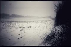 One from the archives (Olympus 35RC, Kodak Tri-X) (Mr B's Photography) Tags: field snow blackandwhite film olympus35rc kodaktrix kodakhc110
