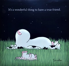 June! (Bennilover) Tags: calendar june sandraboynton cow pig friends buddies buddy flickr friend comic cartoon drawing painting art