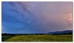 Un arbre électrique ⚡️  Photo d'hier soir juste après le coucher du soleil. (Bob_Reinert) Tags: bobreinert nature nikon eclairs foudre thunderstorms storms strikes france ciel sky alsace