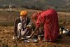 Kalbelya music camp.  Pushkar Mela. Rajasthan (Tito Dalmau) Tags: kalbelya music camp food camels fair mela pushkar rajasthan india