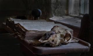 Dead sheep chapel.