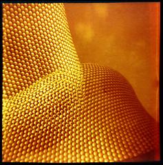 "Selfridges (pho-Tony) Tags: doubleexposure redscale birmingham empirejunior 120 6x6 6cmx6cm rollfilm roll film haking hongkong ""bright – hazy cloudy"" mediumformat lomographyredscale lomo analogue analog ishootfilm medium format"
