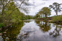 _DSC.0037  - Swale at Healaugh (SWJuk) Tags: reeth england unitedkingdom swjuk uk gb britain yorkshire northyorkshire yorkshiredales dales swaledale healaugh river riverswale water flat calm reflections cloudy greysky trees 2018 may2018 spring holidays nikon d7100 nikond7100 wideangle rawnef lightroomclassiccc landscape countryside 18300mm