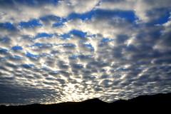 A Silueta do Jarau (Eduardo Amorim) Tags: campo field champ cielo céu sky nubes nuvens clouds nuages quaraí riograndedosul brasil brazil brésil pampa campanha fronteira sudamérica südamerika suramérica américadosul southamerica amériquedusud americameridionale américadelsur americadelsud eduardoamorim montanha cerro montanhas mountains montagne cerros jarau cerrodojarau