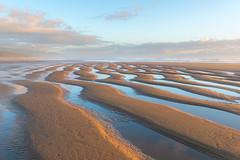 Ripple Pattern (pbandy) Tags: beach beachside ocean spring oregon nature waves northwest tides