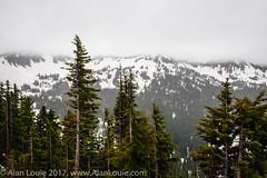 20110714 Mt Ranier 009.jpg (Alan Louie - www.alanlouie.com) Tags: landscape mountrainier washington packwood unitedstates us uspacific