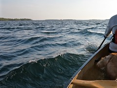 Reading the Water... (deanspic) Tags: river waves wind paddle paddling canoe canoeing stlawrence g1x chop gunnel paddleon riskhomeostasis brisk current stlawrenceriver gusty