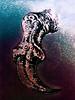 The Magic of the Dragon's Claw (Steve Taylor (Photography)) Tags: dragon claw magic mystical art digitalart impressionist black blue white purple newzealand nz southisland canterbury christchurch texture