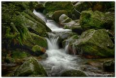 """Cascata Del Trallo (""""Deca"""") Tags: brusimpiano varese primavera spring giugno june acqua water cascate waterfalls inexplore"""