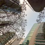Kuala Lumpur restaurants thumbnail