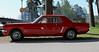 1965 Ford Mustang (crusaderstgeorge) Tags: crusaderstgeorge classiccars cars 1965fordmustang 1965 ford mustang americancars americanclassiccars americancarsinsweden årsunda sweden sverige redcars red
