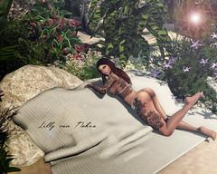 σп тнε вεαcн (♣♦ Lilly von Nekro ♦♣) Tags: secondlife sl second sexy sun summer art babes fashion tattoo naked nature beauty 3d firestorm girls beach life illustration belzebubble music virtual pose people piercing