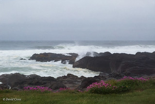 The Sea at Yachats