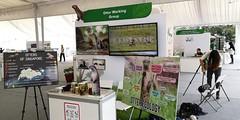 7festival-of-biodiversity-2018-03jun2018[maxkhoo] (Habitatnews) Tags: nustoddycats festivalofbiodiversity fob2018 tampines lkcnhm