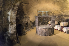 Etruscan Cave (dcnelson1898) Tags: montepulciano tuscany italy town wine travel vacation countryside dericciwinery ancient etruscan well cave